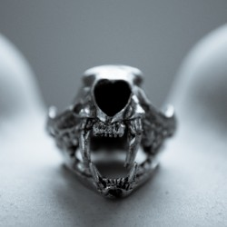 Lion Skull vs. Serpenthes