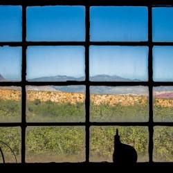Bonnie Springs Ranch